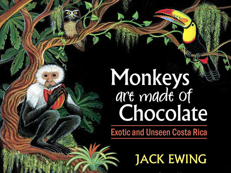 Monkeys Are Made of Chocolate book