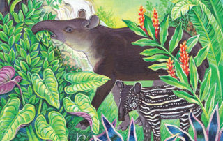 Where Tapirs and Jaguars Once Roamed-cover slice