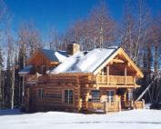 log cabin, Colorado Rockies
